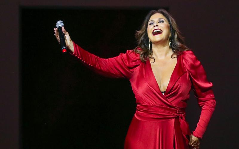 Fafá anuncia live com temas românticos de novelas