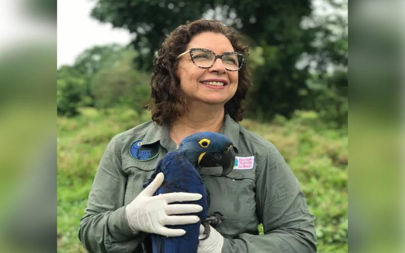 Brasileira salva araras-azuis da extinção e entra no Hall da Fama da ONU